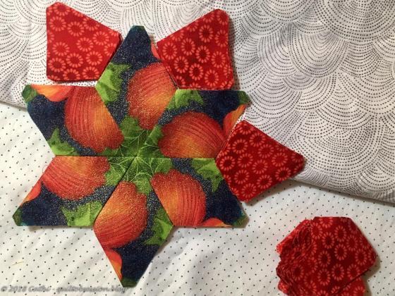 Star with red kite IMG_1340wtmk