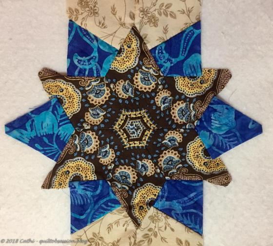 Brown & Blue 2IMG_1479wtmk
