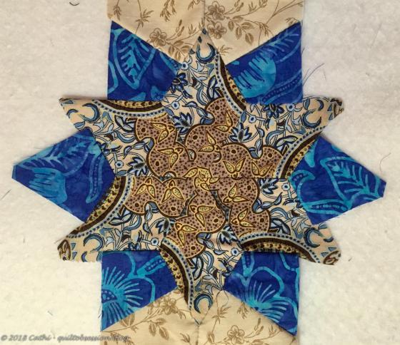 Brown & Blue 5IMG_1475wtmk